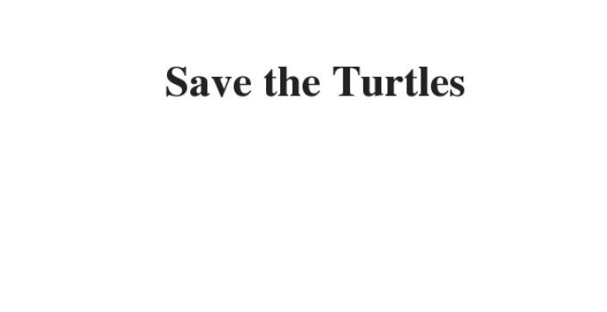 ( Update 2021) Save the Turtles | IELTS Reading Practice Test