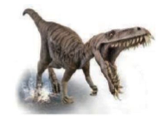 The Dinosaurs Footprints and Extinction
