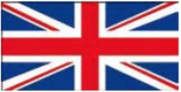 Saving the British Bitterns